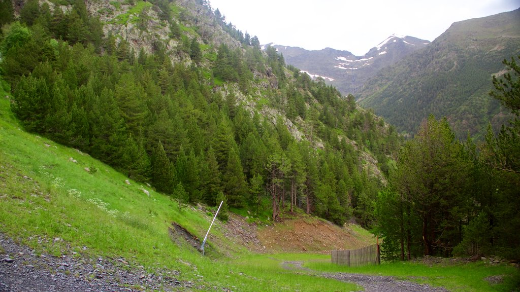 Arinsal which includes forest scenes, tranquil scenes and mountains
