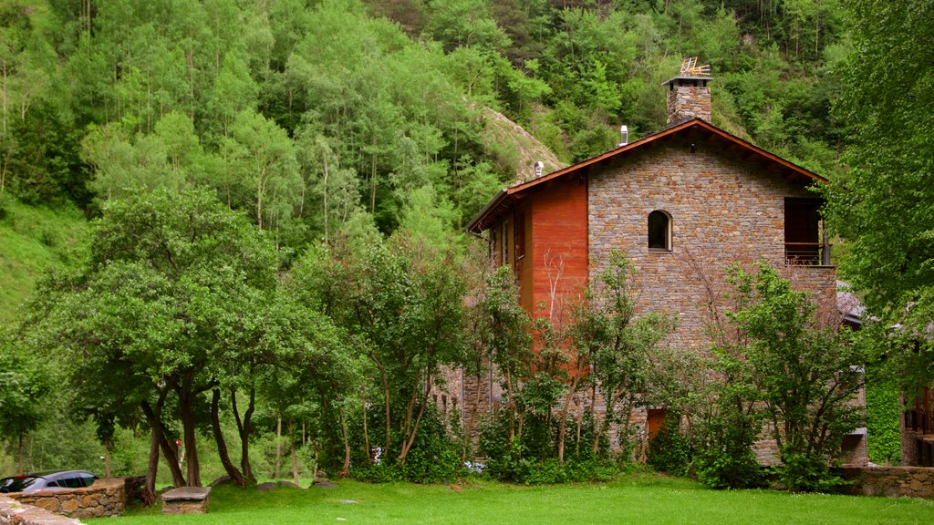 La Cortinada showing a house and forests