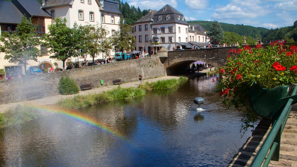 Vianden showing a river or creek, flowers and a small town or village