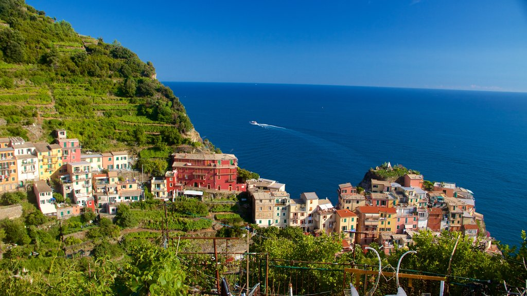 Manarola featuring a coastal town and general coastal views