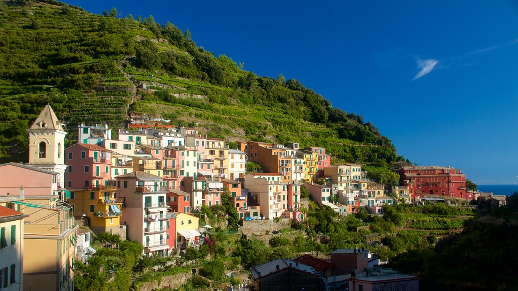 Manarola which includes general coastal views and a coastal town