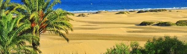 Las 10 cosas que no te puedes perder en Gran Canaria