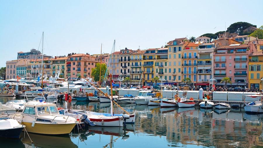 Le meilleur de Cannes, perle de la Côte d'Azur