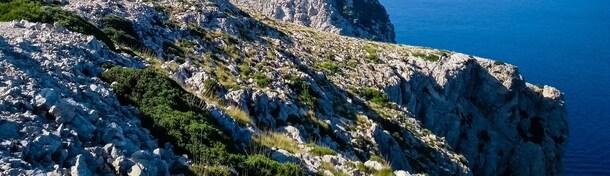 Winter auf Mallorca: 7 Tipps für einen sonnigen Inselurlaub