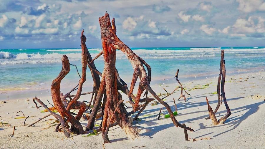 Mare a Varadero: guida a una delle spiagge più belle del mondo