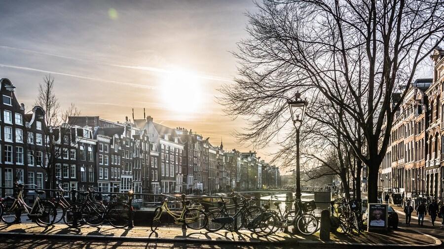 Sightseeing auf zwei Rädern: die 10 schönsten Radtouren in Amsterdam und Umgebung