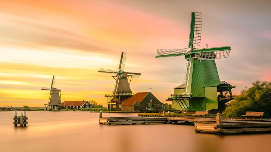 Windmühlen und Tulpen - die schönsten Ausflüge um Amsterdam