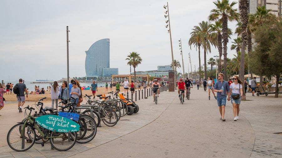 Les 5 plus belles promenades à vélo à faire à Barcelone