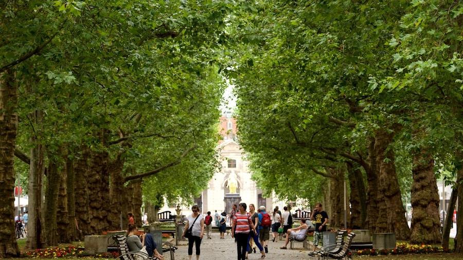 Grün pur: die schönsten Spaziergänge und Gärten in Dresden