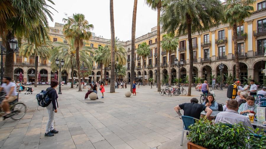 Barcellona in bici: i migliori itinerari e come noleggiare una bicicletta