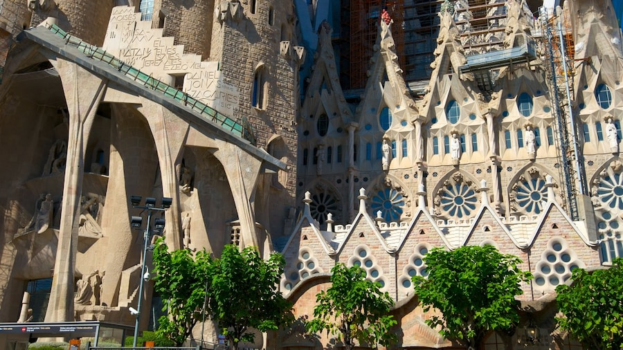 Summer in Barcelona: The Best Things to Do