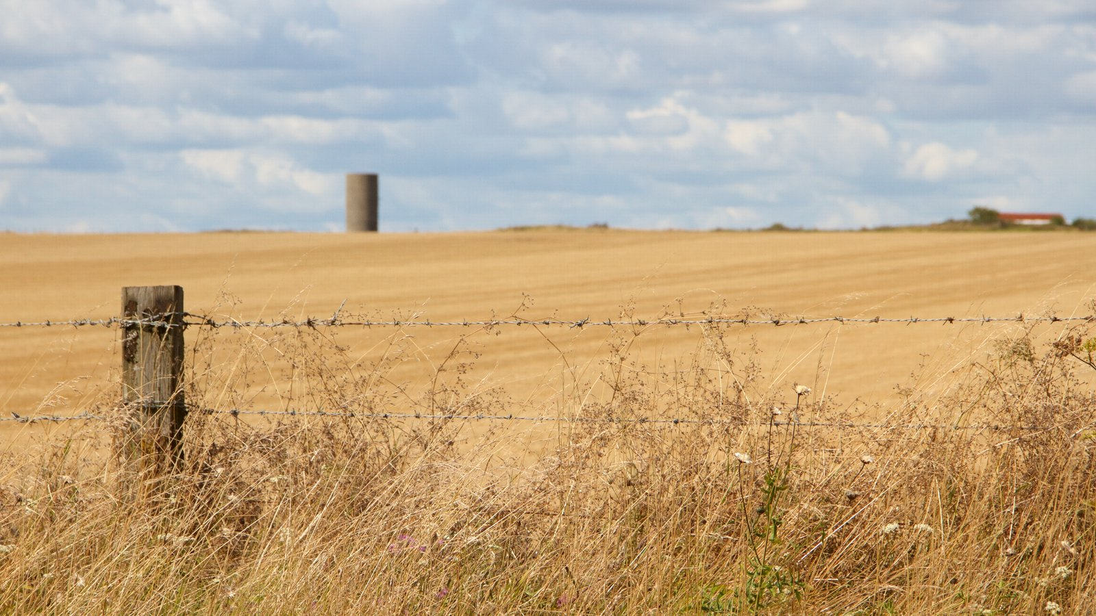 Stonehenge featuring farmland and tranquil scenes