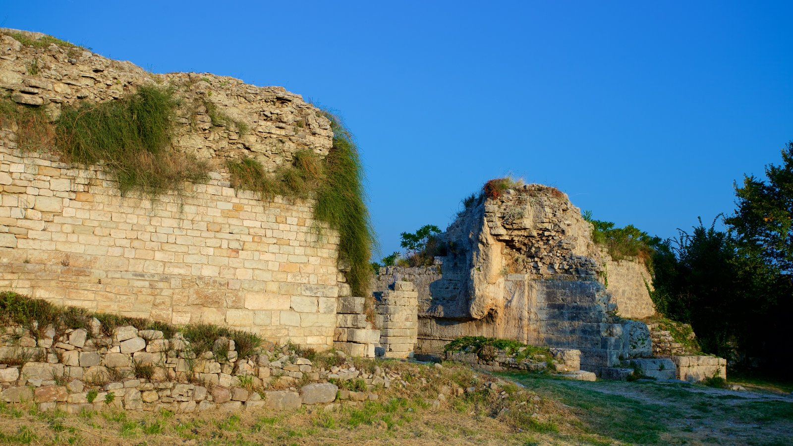 Salona Ruins showing heritage elements and a ruin