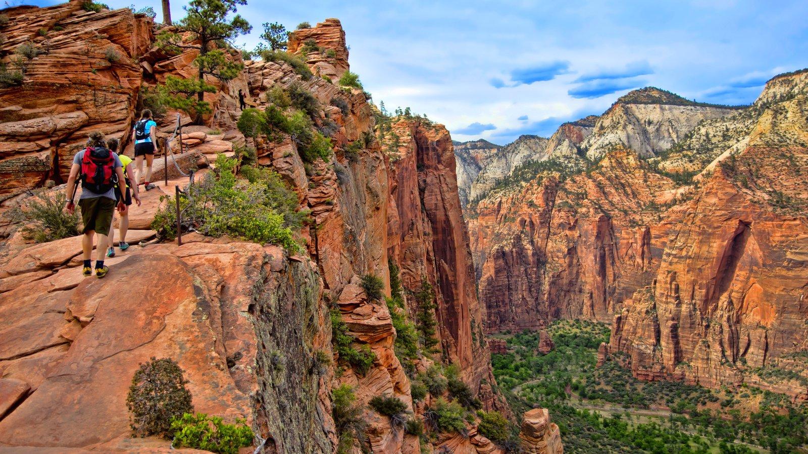 Parque Nacional Zion ofreciendo un barranco o cañón y senderismo o caminata y también un pequeño grupo de personas
