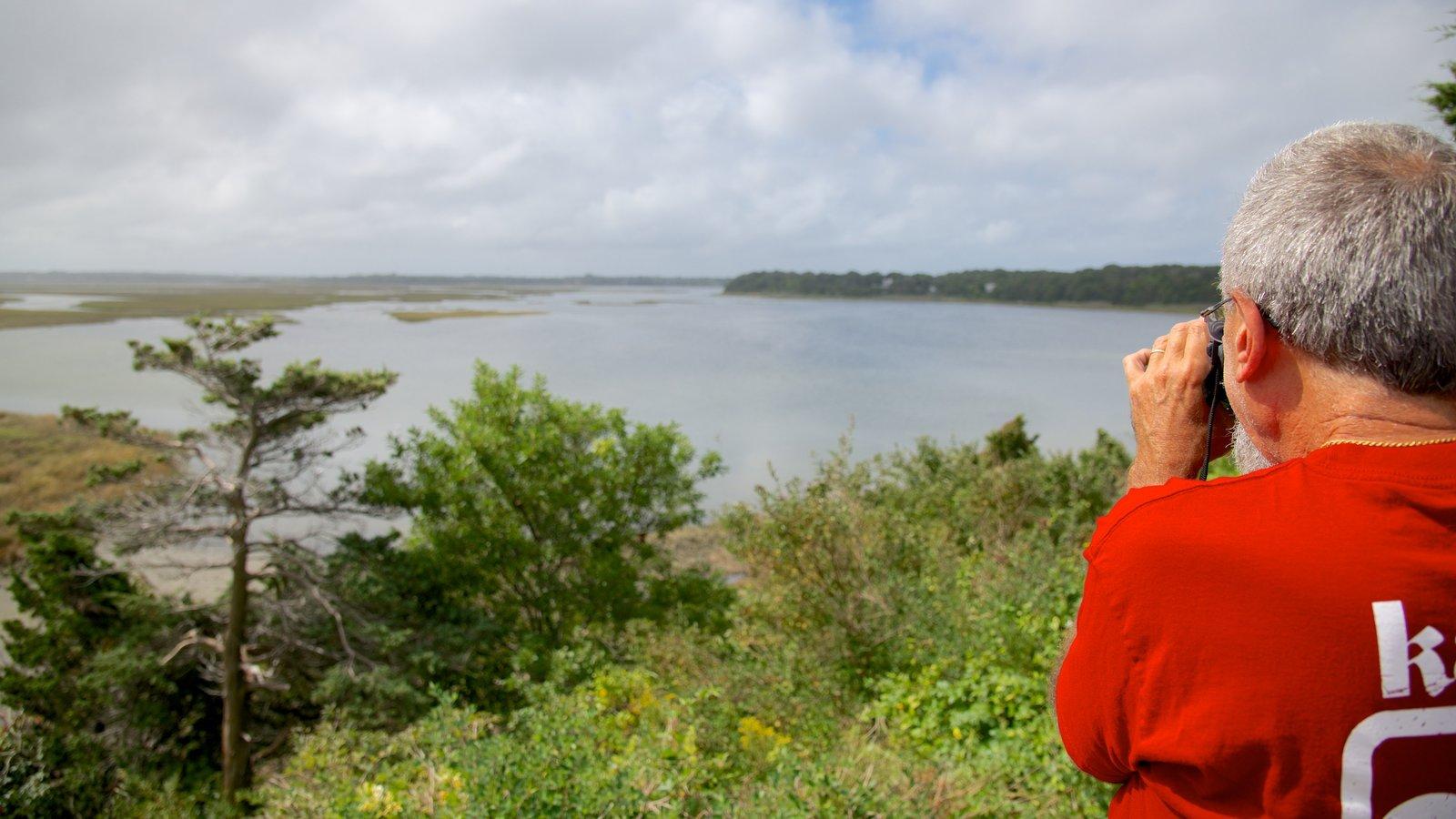 Coast Guard Beach showing general coastal views as well as an individual male