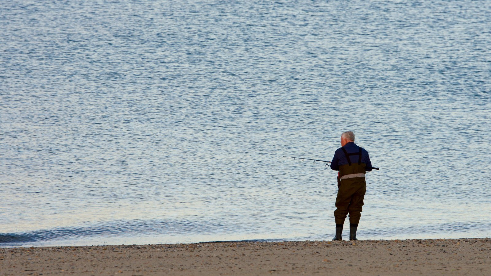 Herring Cove Beach which includes fishing and a beach as well as an individual male