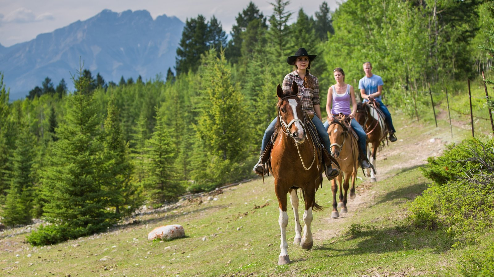Banff National Park showing horse riding and forest scenes
