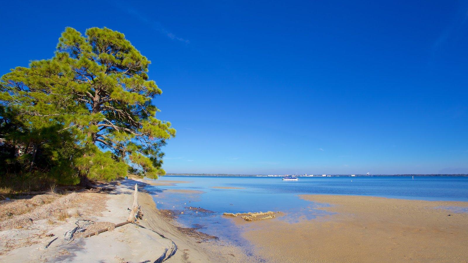 Upper Grand Lagoon mostrando uma praia de areia