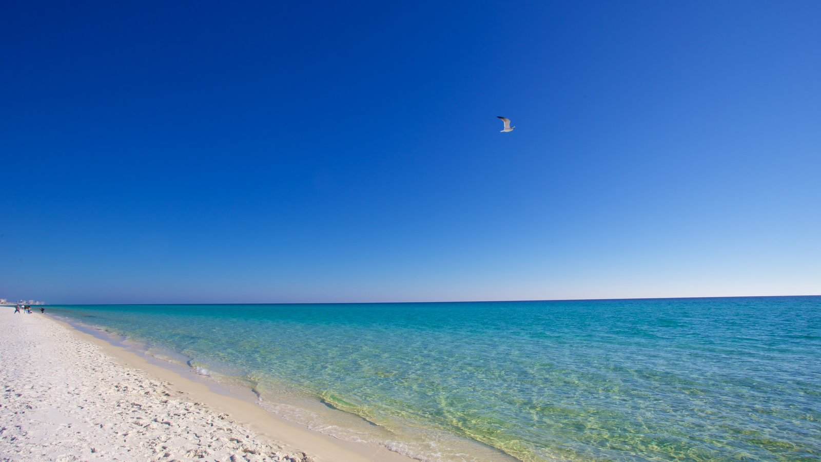 singles in fort walton beach Zillow has 132 homes for sale in fort walton beach fl  by analyzing information on thousands of single family homes for sale in fort walton beach,.