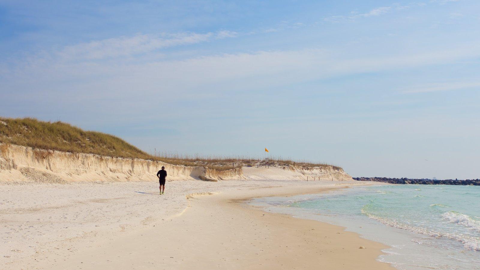 St. Andrews State Park caracterizando uma praia assim como um homem sozinho