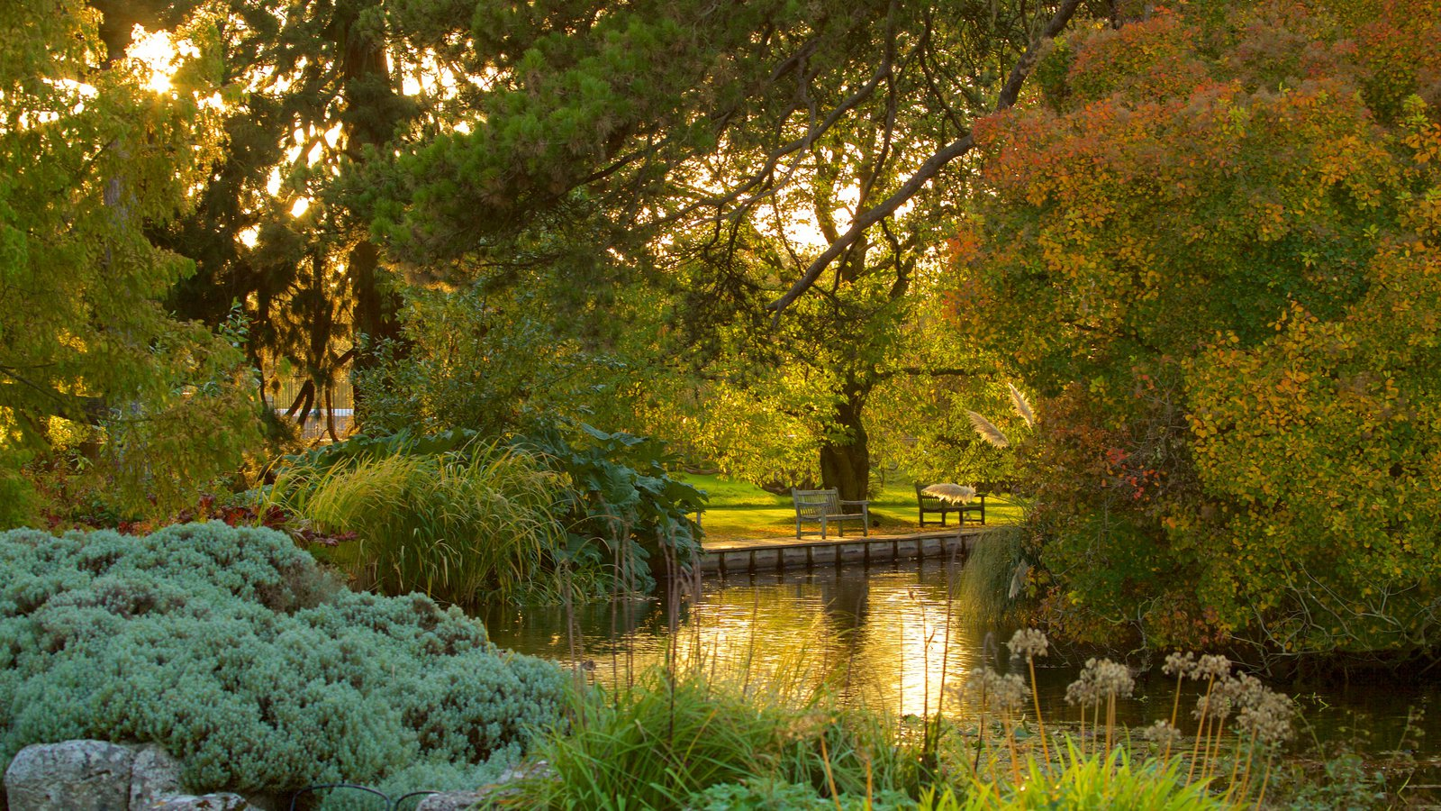 University Botanic Gardens featuring a river or creek, a garden and forest scenes