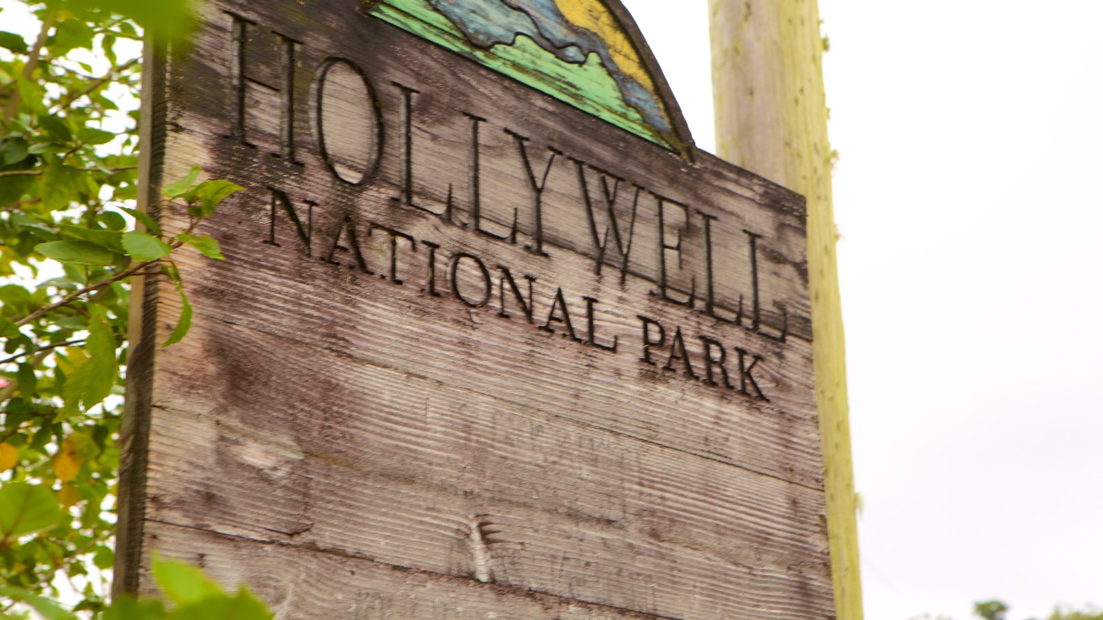 Holywell Park featuring signage