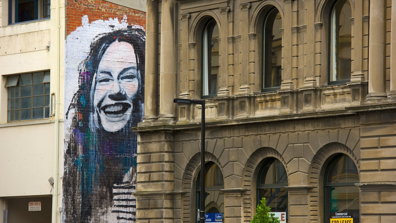 Dunedin showing outdoor art