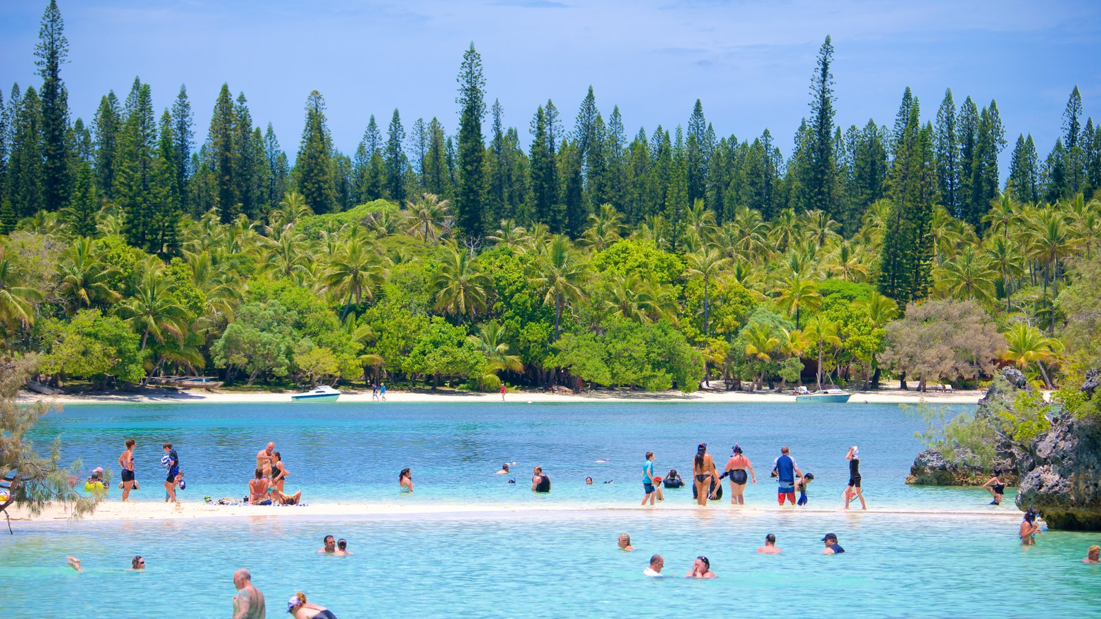 Kanumera Beach caracterizando paisagens litorâneas e natação assim como um grande grupo de pessoas
