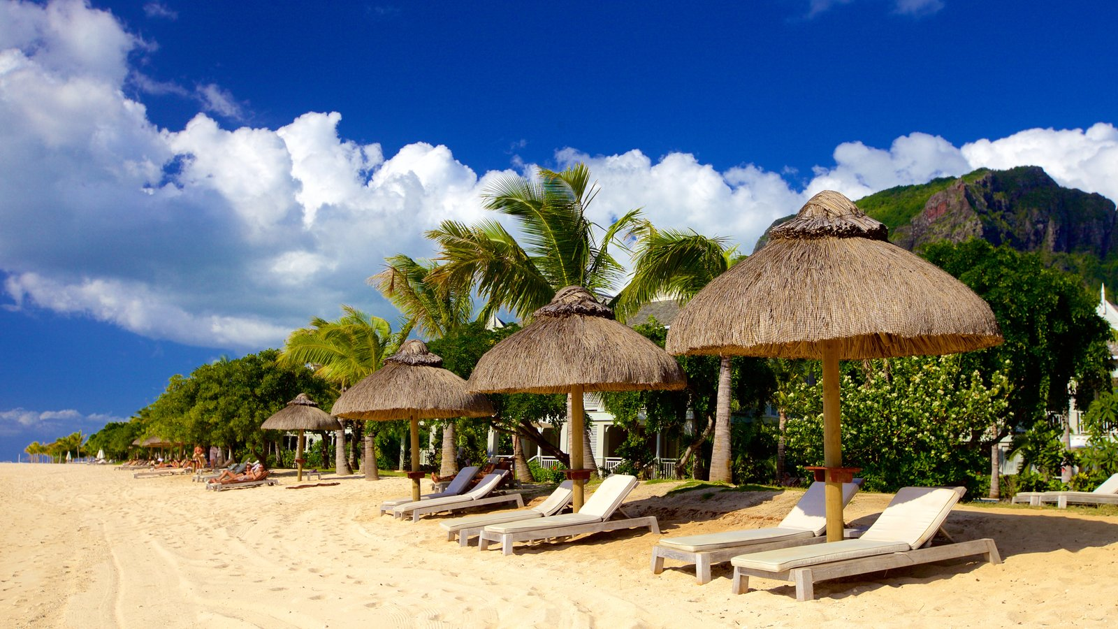 Beach Pictures View Images Of Le Morne Afrika Et Tour Horseback Riding Featuring A Luxury Hotel Or Resort And Sandy