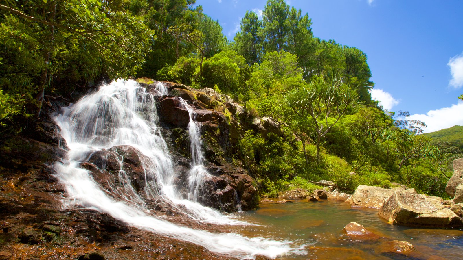 Black River Gorges National Park featuring a lake or waterhole and a waterfall