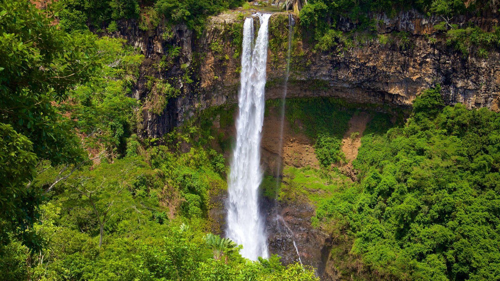Black River Gorges National Park which includes a waterfall and rainforest
