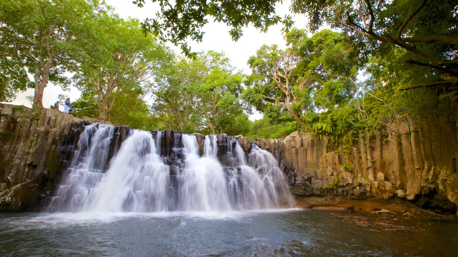 Black River Gorges National Park which includes a cascade and a river or creek