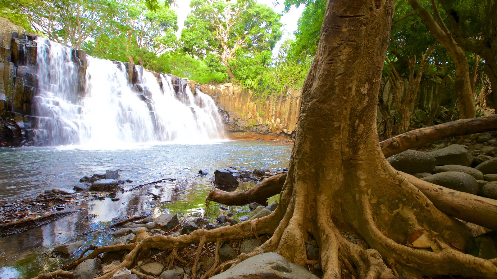 Black River Gorges National Park which includes a waterfall and a river or creek