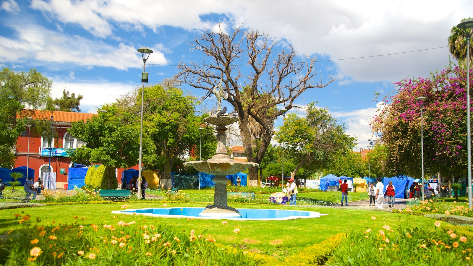 Plaza Colon mostrando um jardim