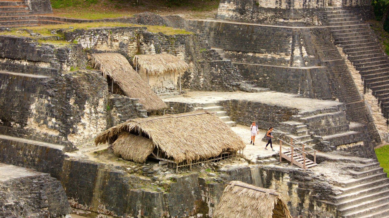 Tikal mostrando elementos de patrimônio e um monumento