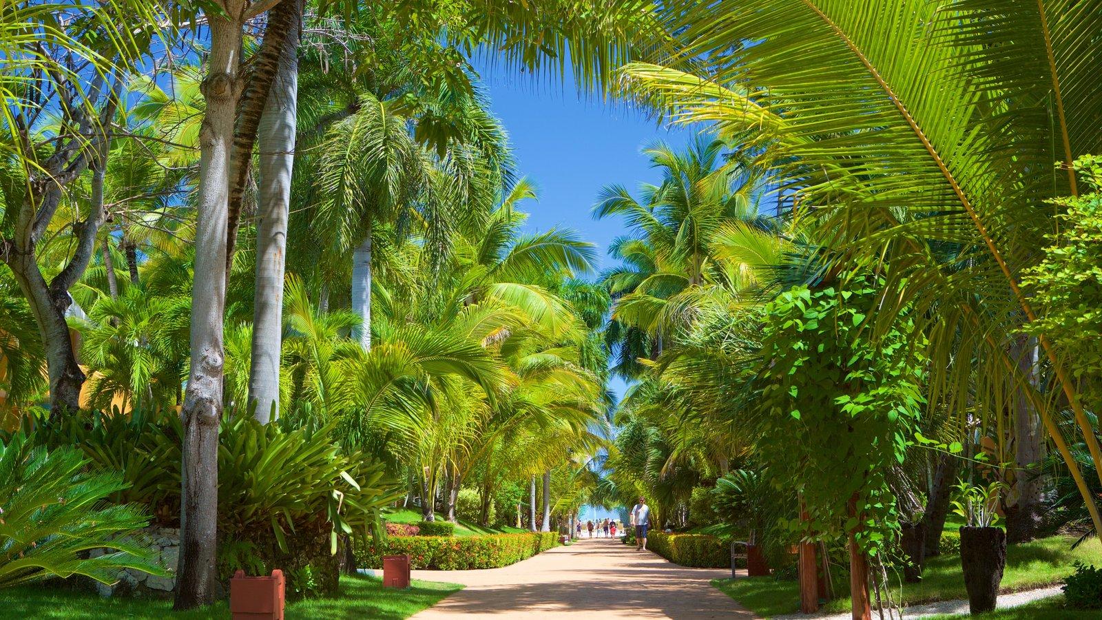 Blue World Travel Punta Cana