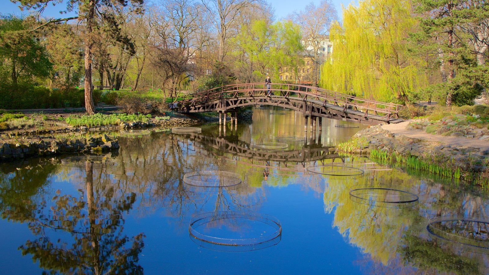 Gardens & Parks Pictures: View Images of Wroclaw