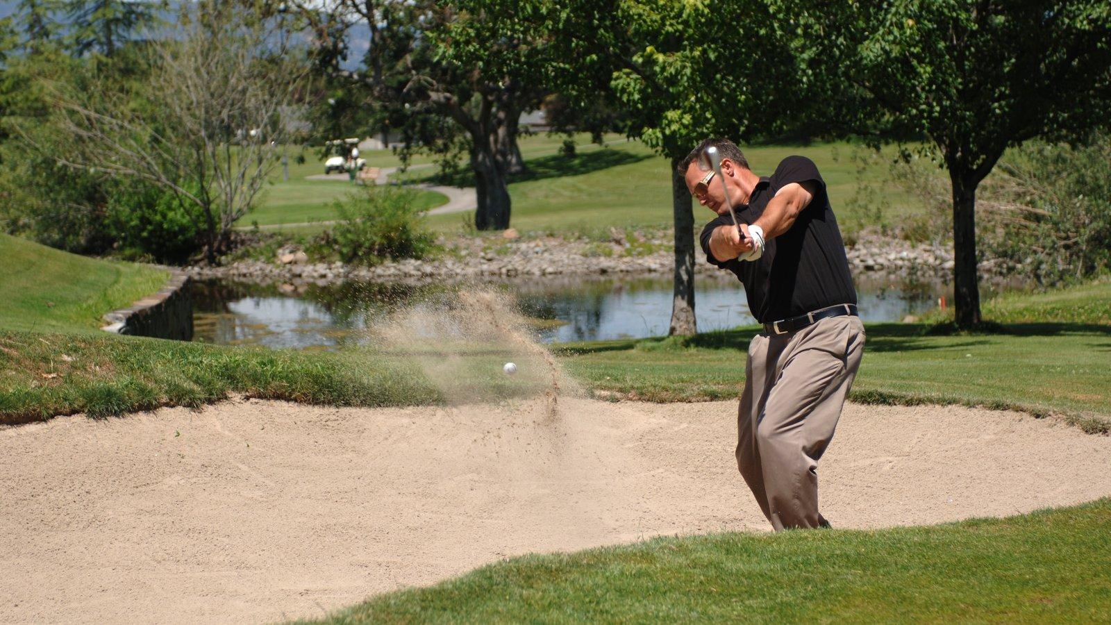 Medford que incluye golf y también un hombre