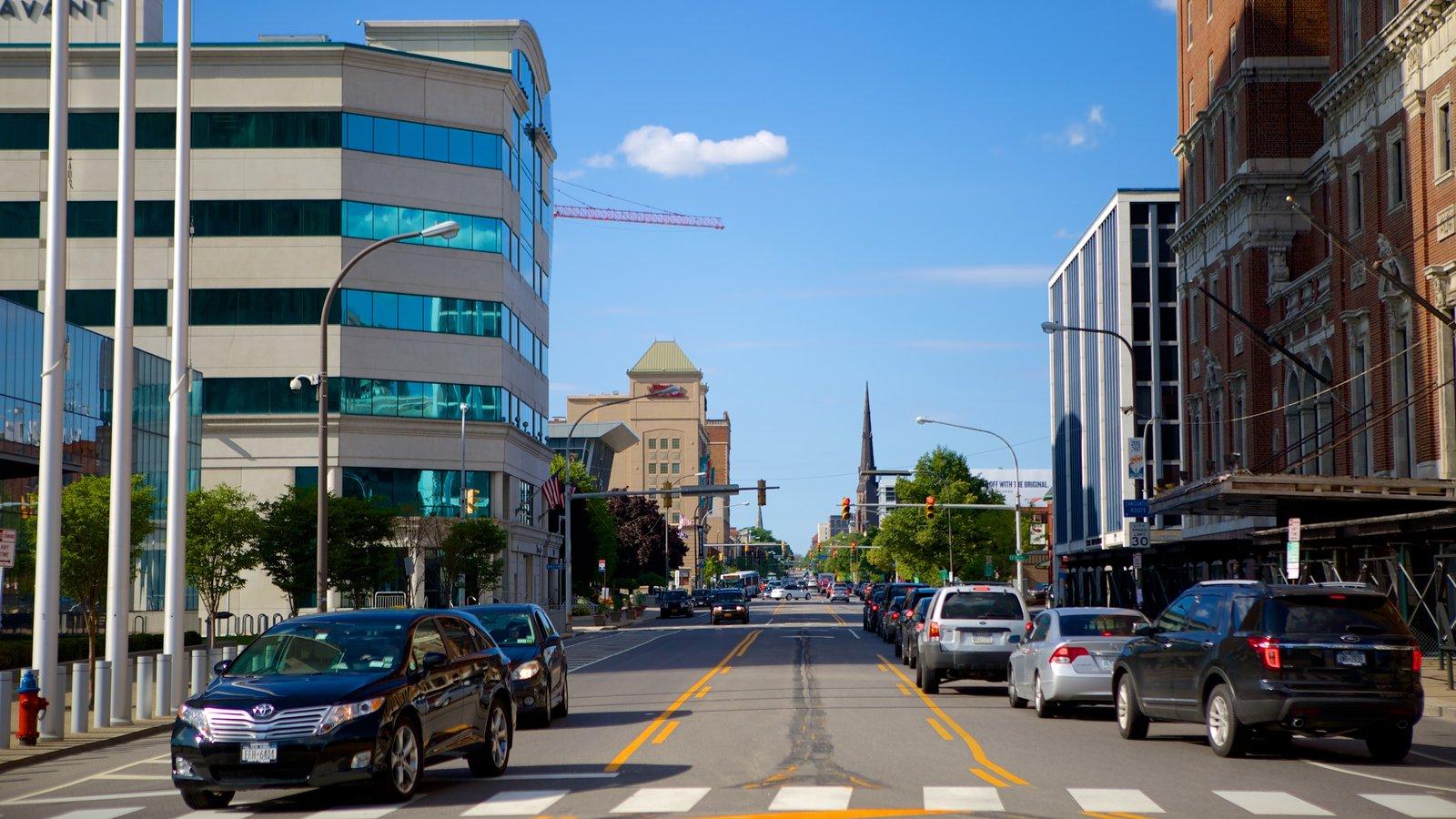 Buffalo que inclui uma cidade e cbd