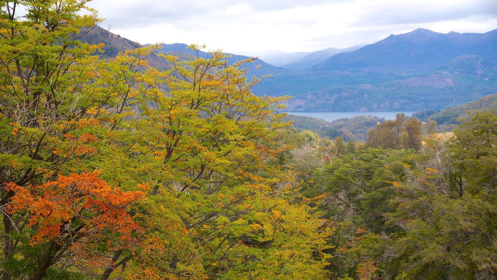 San Martin de los Andes que inclui cenas tranquilas e paisagem