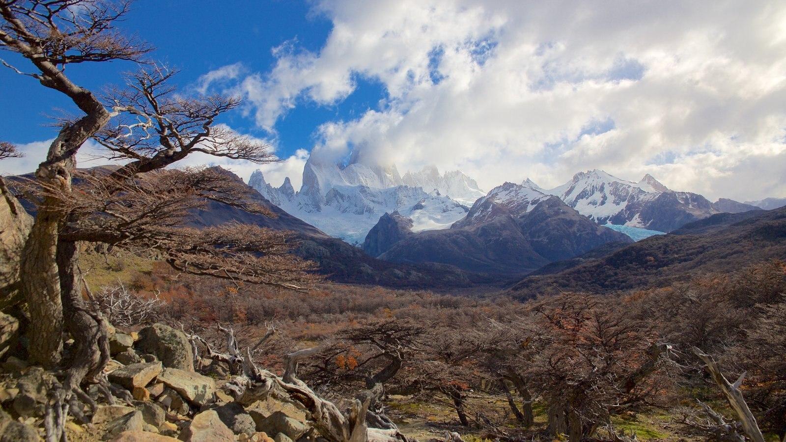 Parque Nacional Los Glaciares mostrando paisagem, montanhas e cenas tranquilas