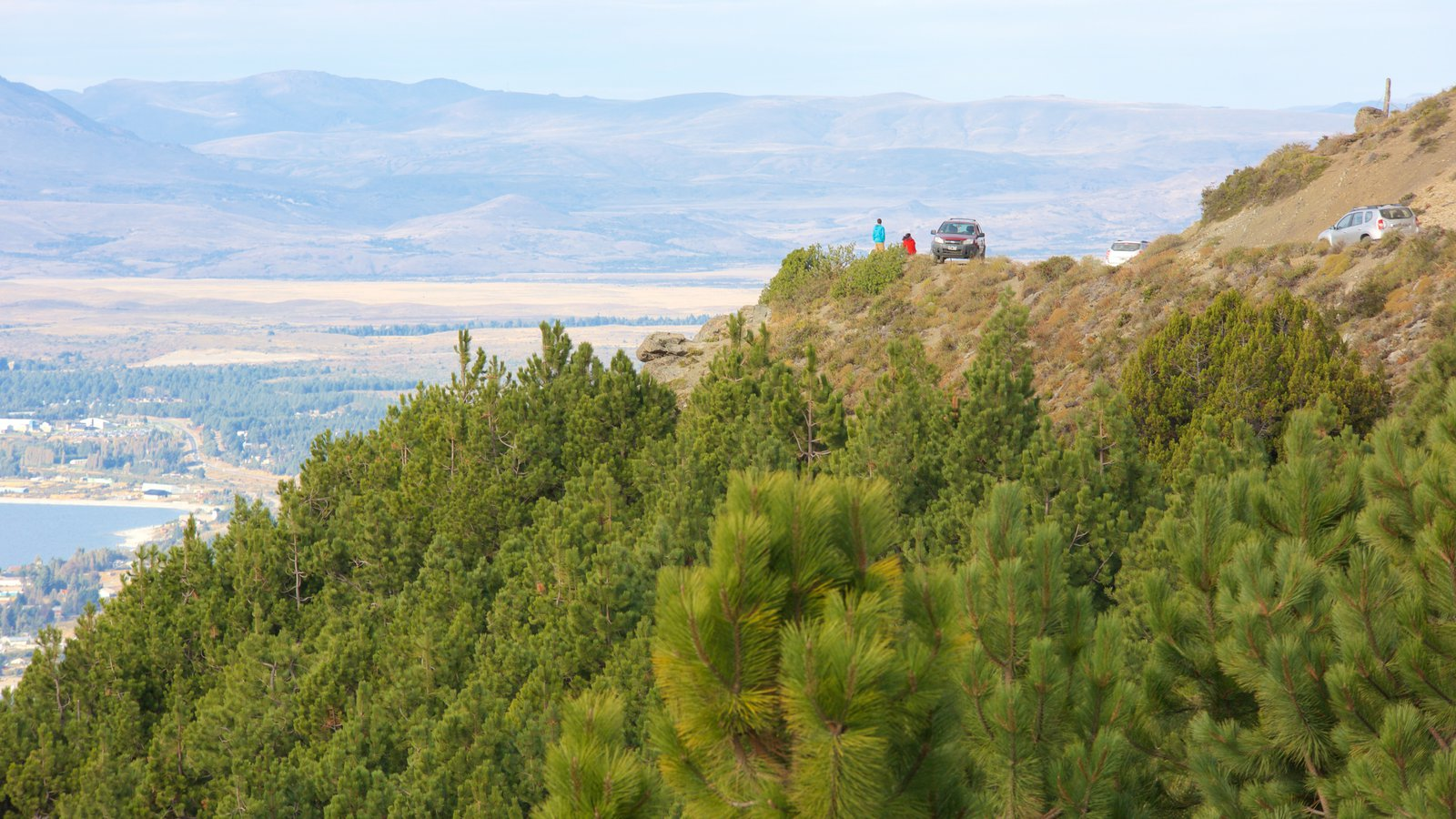 Cerro Otto que inclui florestas e cenas tranquilas