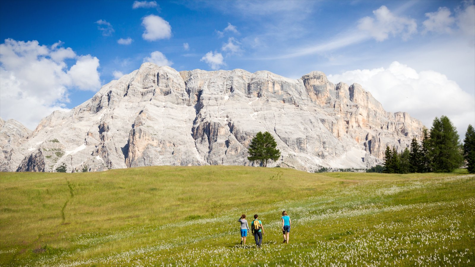 Alta Badia which includes mountains and tranquil scenes