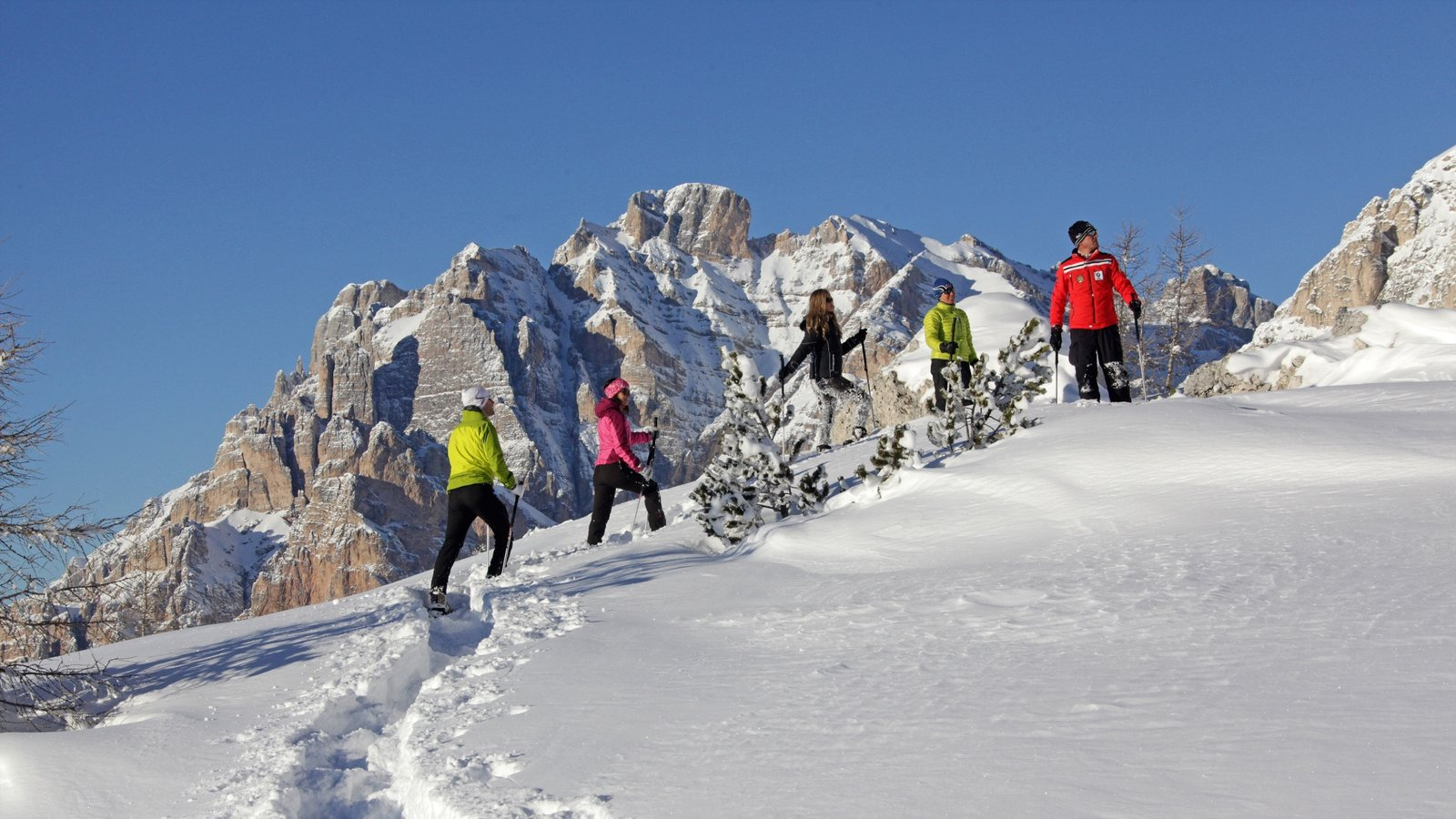 Alta Badia featuring snow shoeing and snow as well as a small group of people