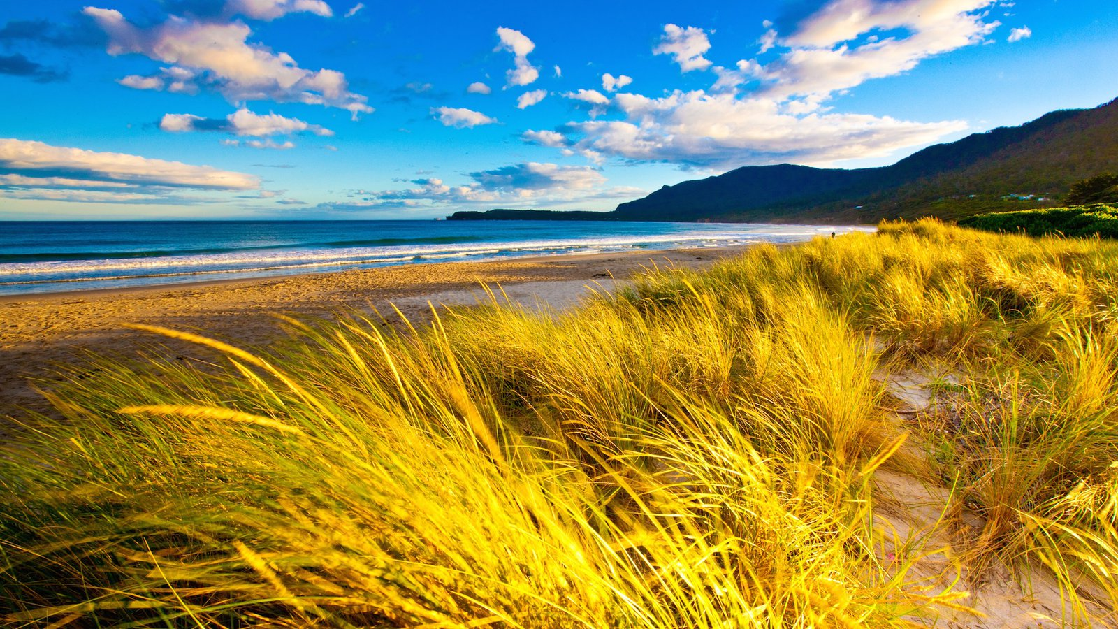 Tasman Peninsula which includes general coastal views, tranquil scenes and landscape views