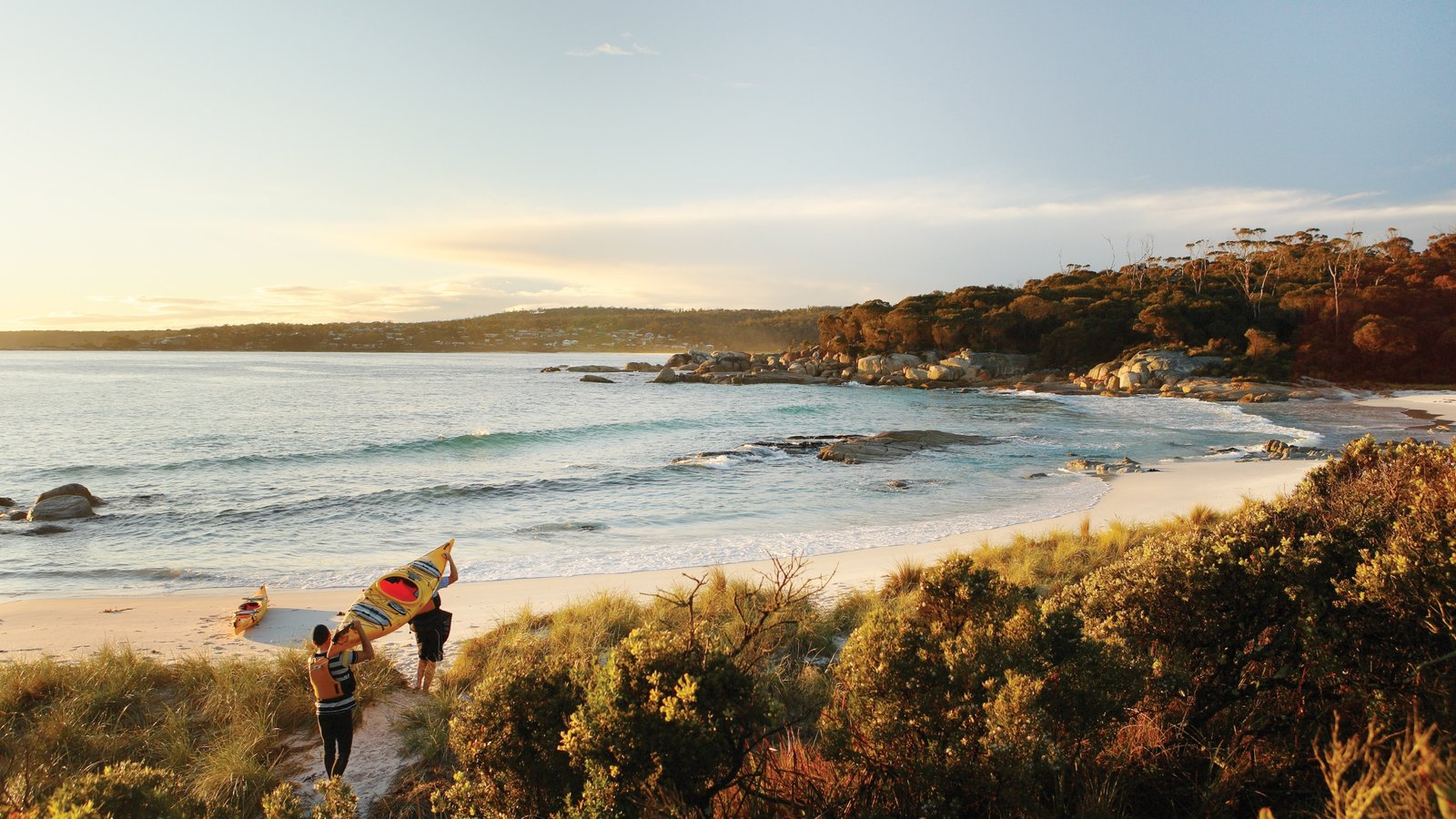 Binalong Bay which includes general coastal views, a sunset and a beach