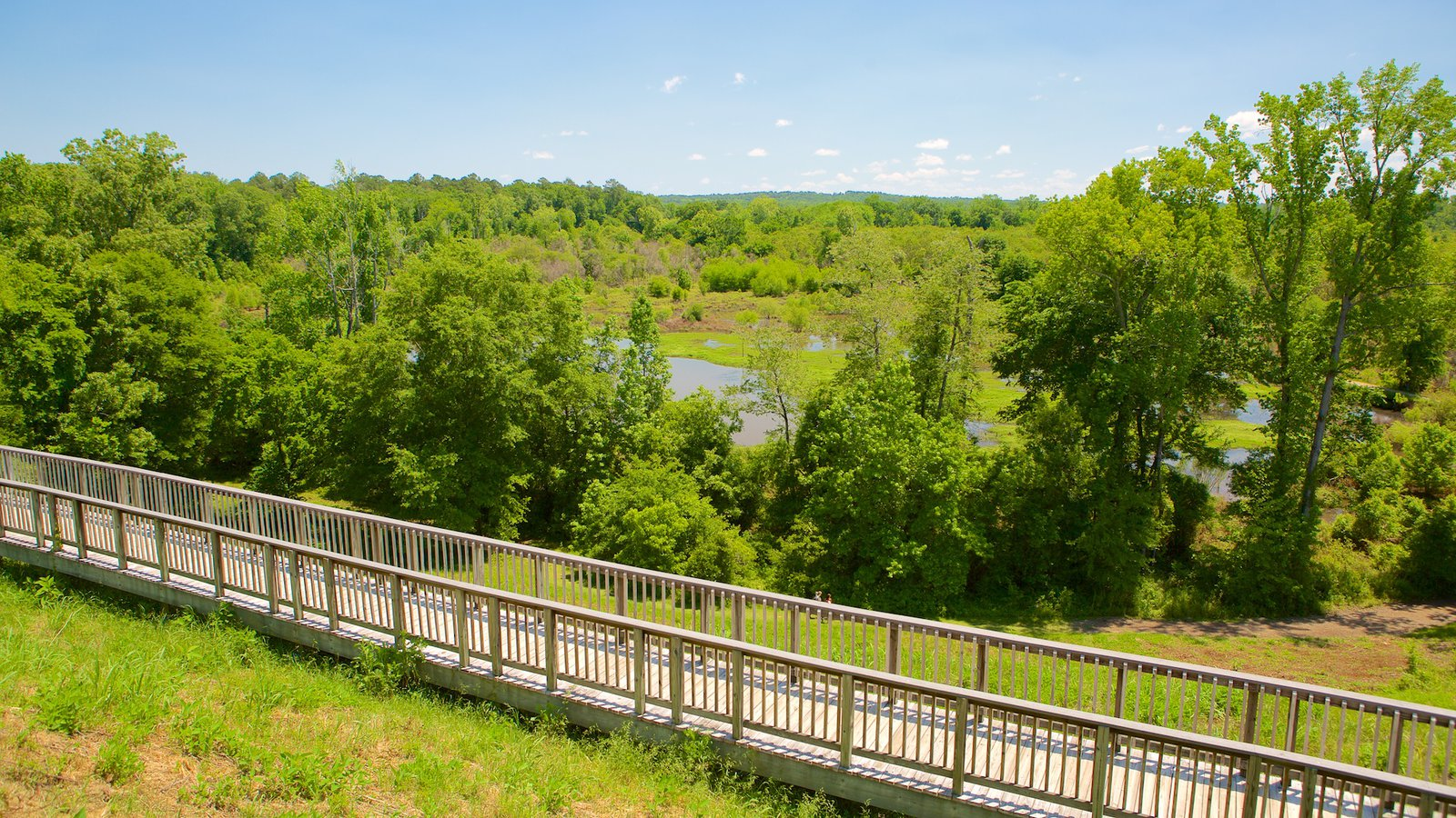 Ocmulgee National Monument which includes tranquil scenes
