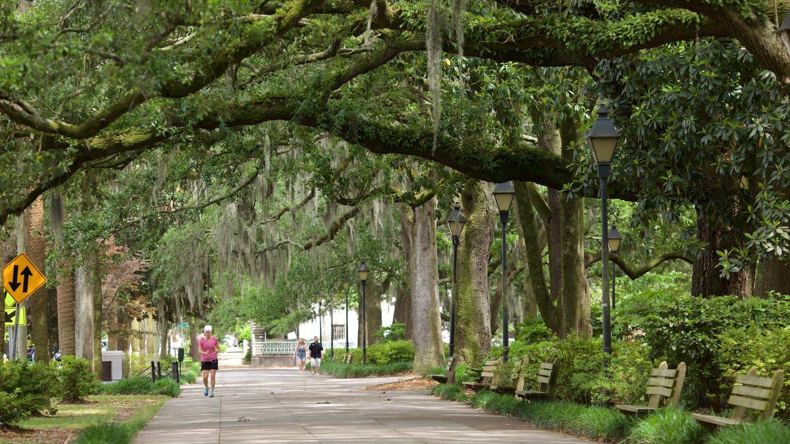 Savannah Ga Nature Center