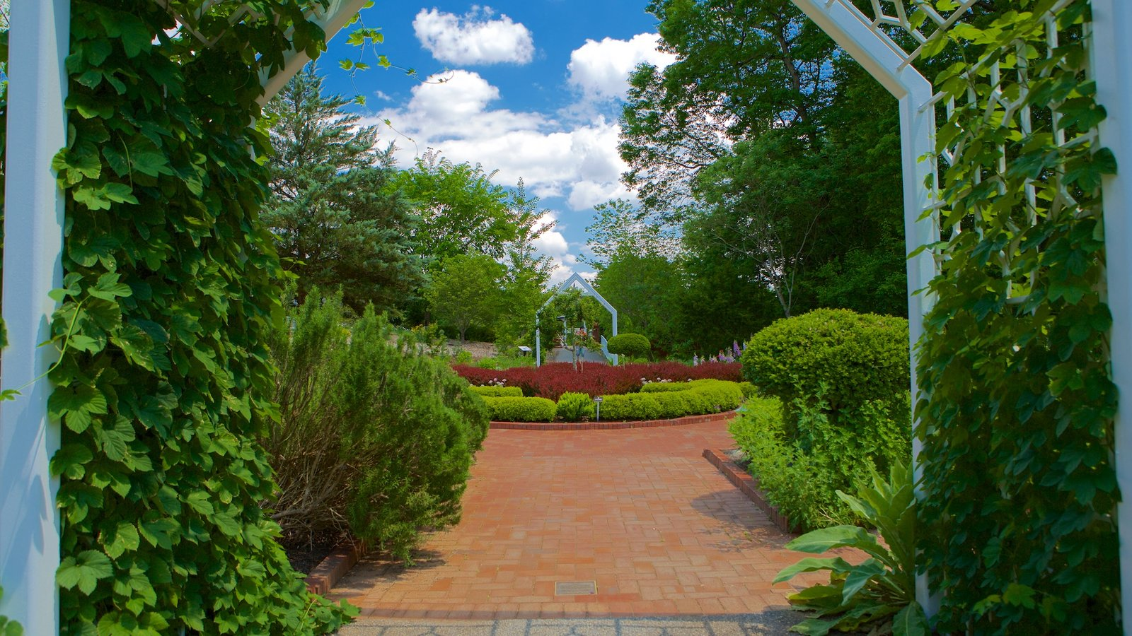state botanical garden of pictures view photos images of state botanical garden of