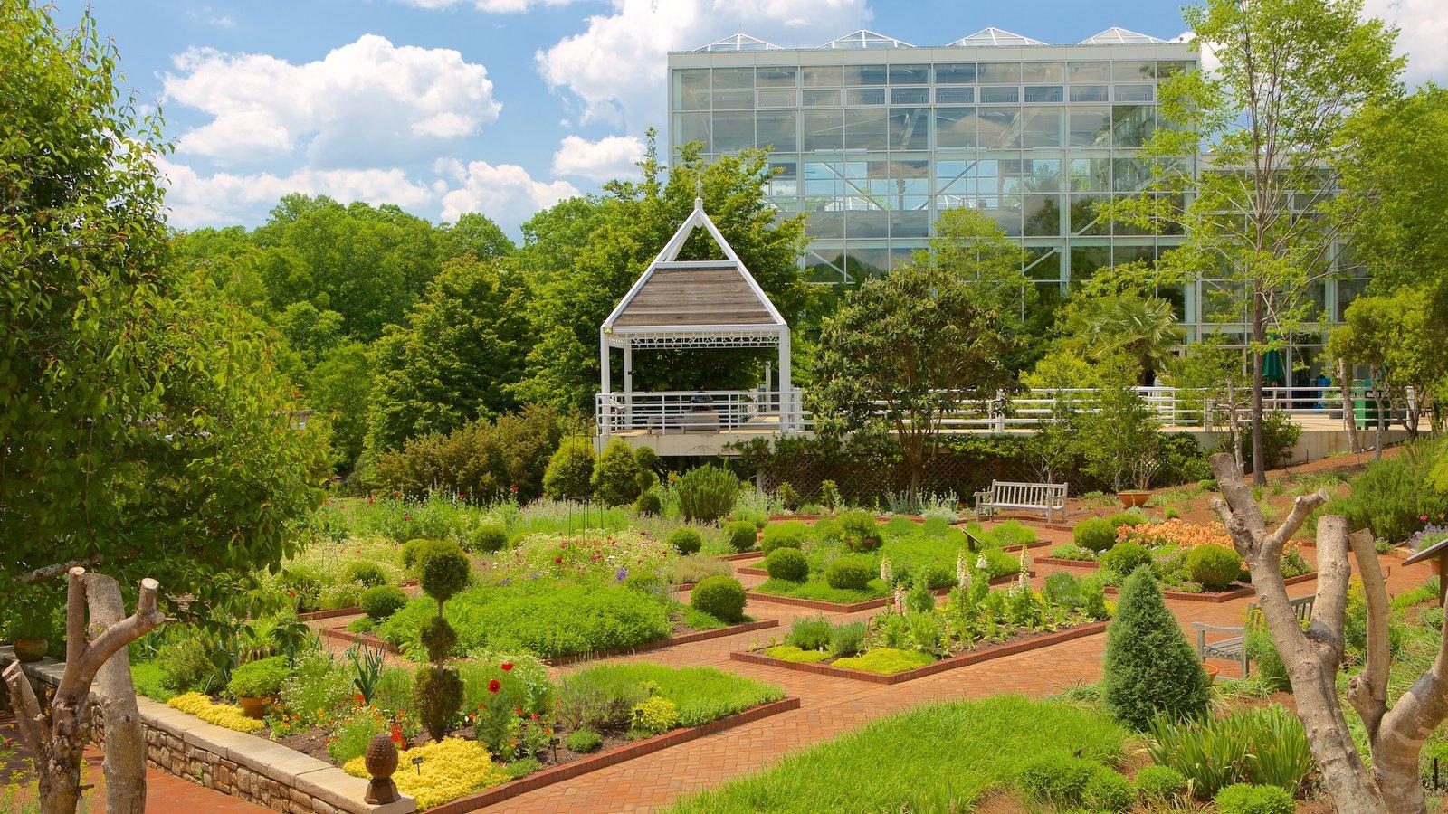Attirant State Botanical Garden Of Georgia Which Includes A Garden